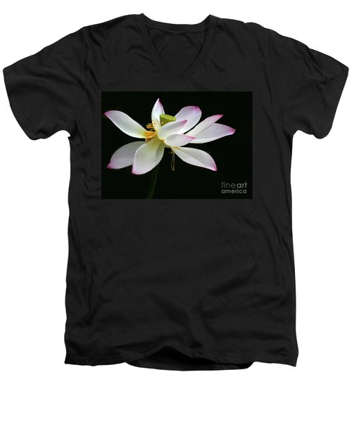 Royal Lotus Men's V-Neck T-Shirt
