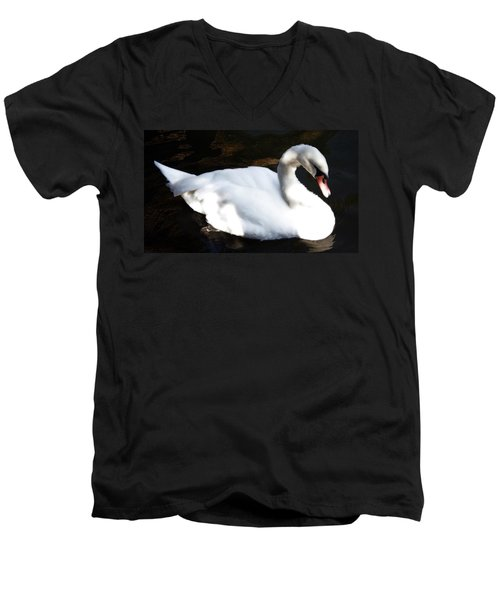 Royal Swan Men's V-Neck T-Shirt