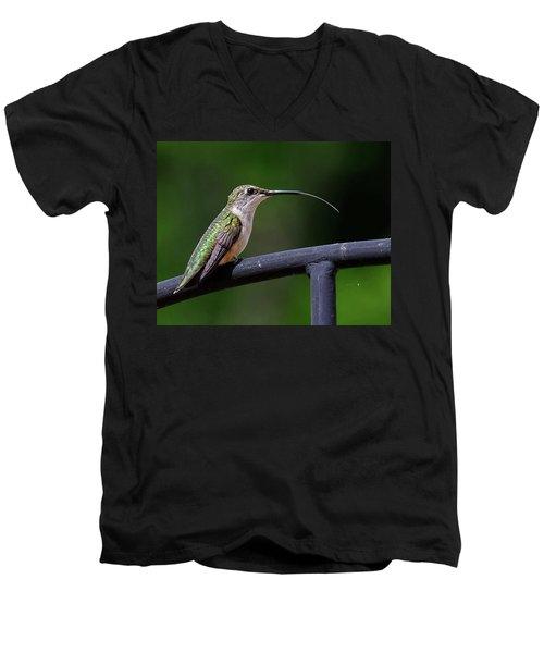 Ruby-throated Hummingbird Tongue Men's V-Neck T-Shirt by Ronda Ryan