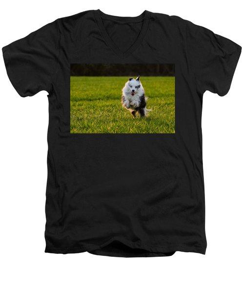 Running Australian Shepherd Men's V-Neck T-Shirt by Daniel Precht