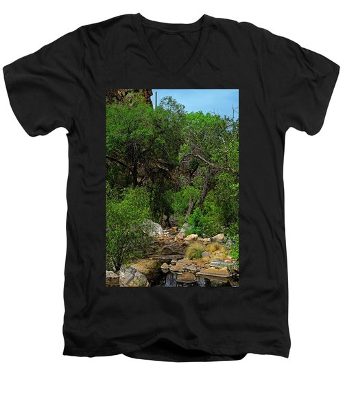 Men's V-Neck T-Shirt featuring the photograph Sabino Canyon V49 by Mark Myhaver