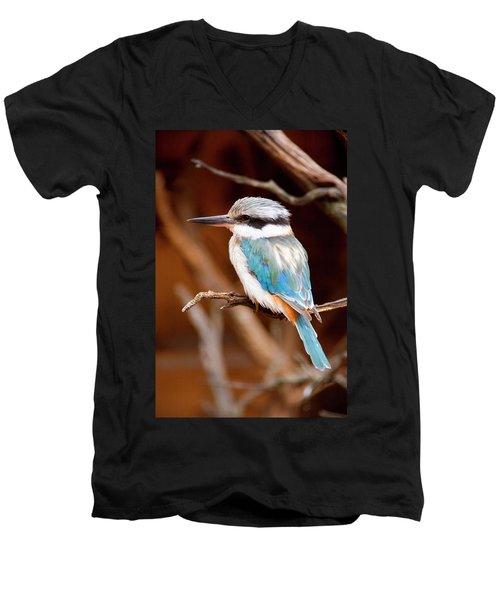 Sacred Kingfisher Men's V-Neck T-Shirt