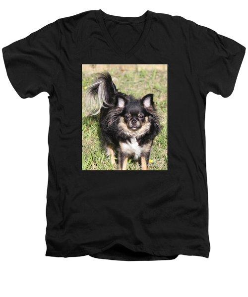 Sammie Jo Men's V-Neck T-Shirt