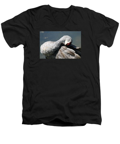Sandhill Crane 7 Men's V-Neck T-Shirt by Rebecca Cozart