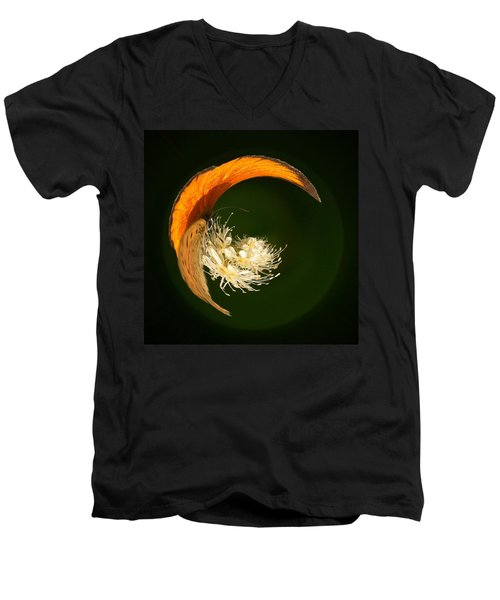 Men's V-Neck T-Shirt featuring the photograph Scarce Copper 4 by Jouko Lehto