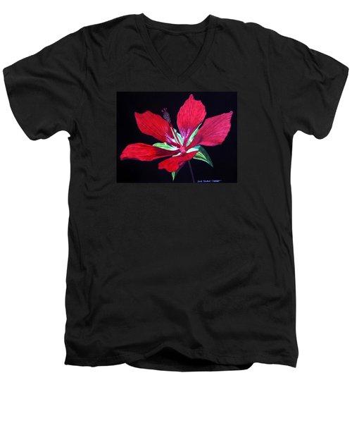 Scarlet Men's V-Neck T-Shirt by Anita Putman