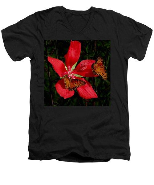 Scarlet Beauty Men's V-Neck T-Shirt