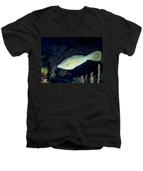 Men's V-Neck T-Shirt featuring the photograph Scrawled Filefish by Jean Noren