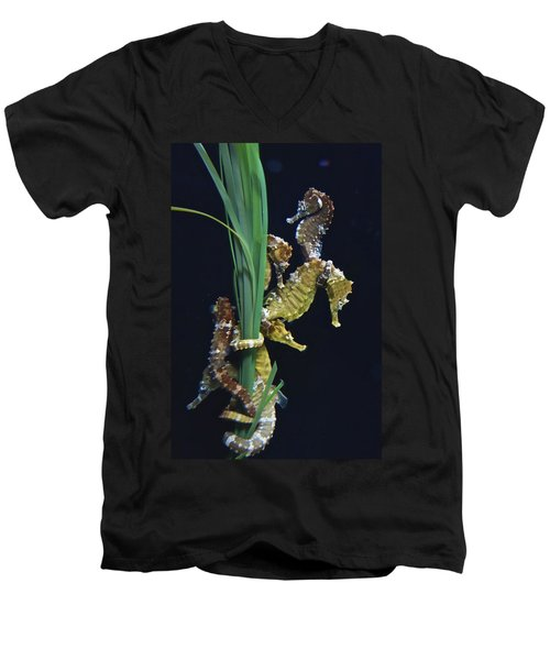 Men's V-Neck T-Shirt featuring the photograph Sea Horse by Joan Reese