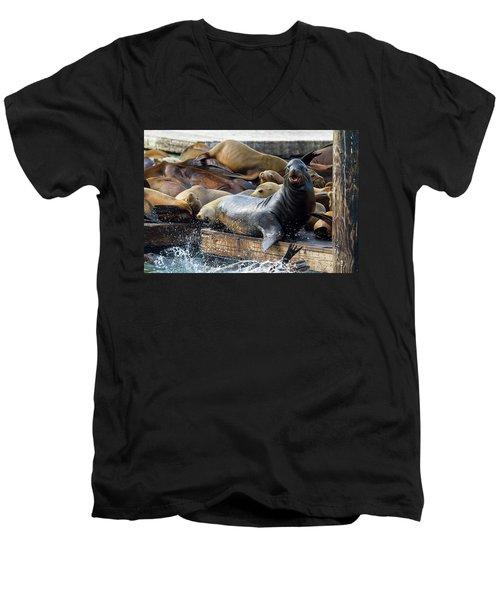 Sea Lions On The Floating Dock In San Francisco Men's V-Neck T-Shirt