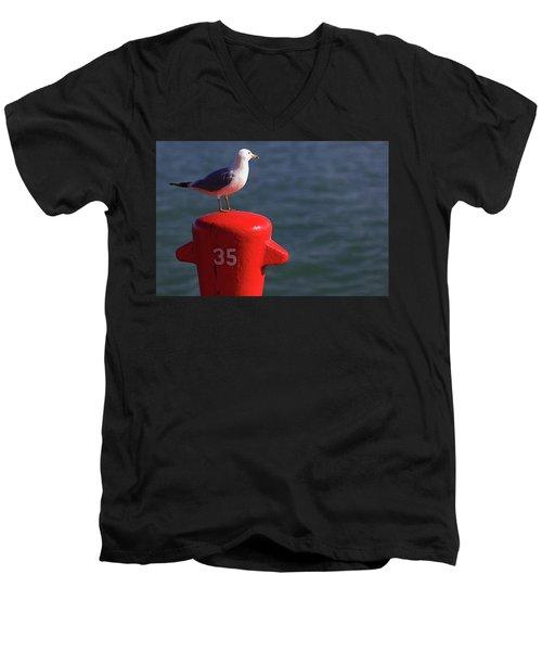 Seagull Number 35 Men's V-Neck T-Shirt