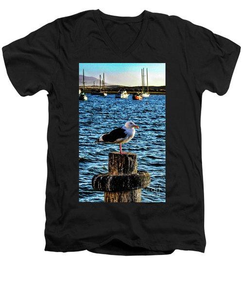 Seagull Perch Men's V-Neck T-Shirt