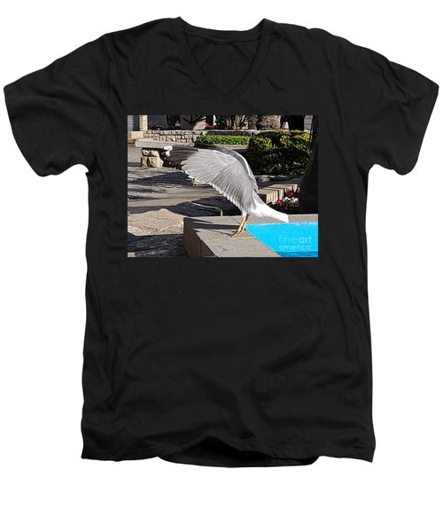 Seagull Showing Off Men's V-Neck T-Shirt