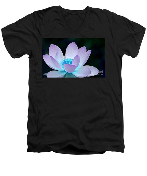 Serene Men's V-Neck T-Shirt