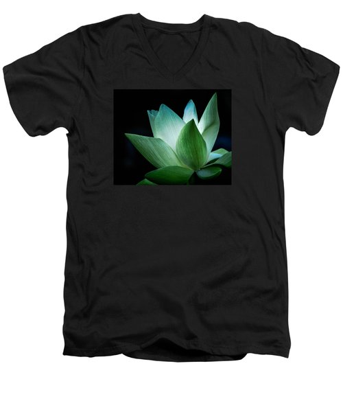 Serenity Men's V-Neck T-Shirt by Julie Palencia