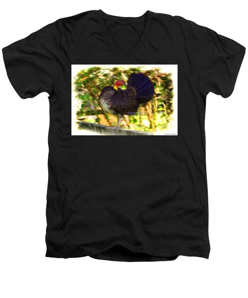 Men's V-Neck T-Shirt featuring the photograph Show Off 01 by Kevin Chippindall