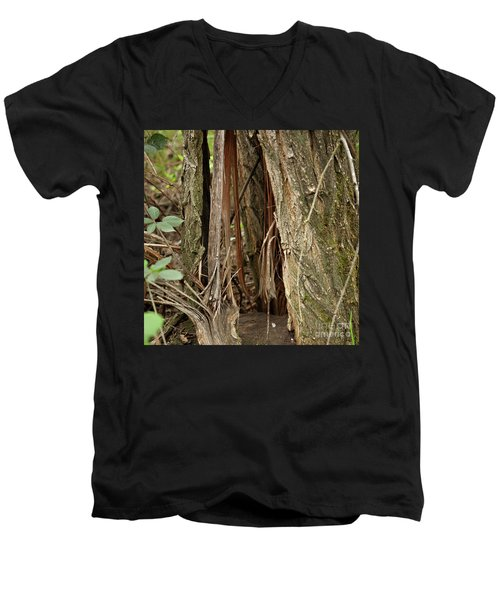 Shredded Tree Men's V-Neck T-Shirt