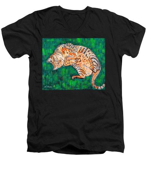 Siesta Men's V-Neck T-Shirt by Valerie Ornstein