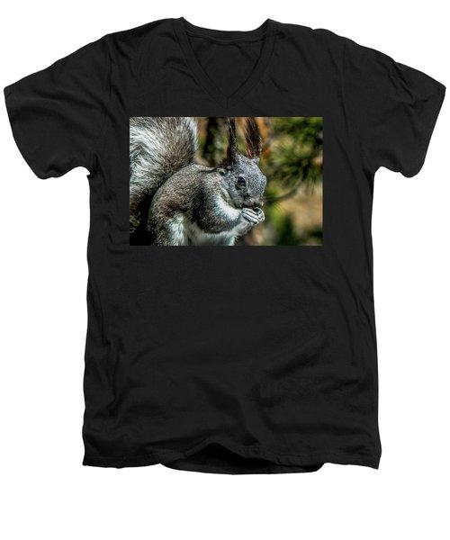 Silver Abert's Squirrel Close-up Men's V-Neck T-Shirt by Marilyn Burton