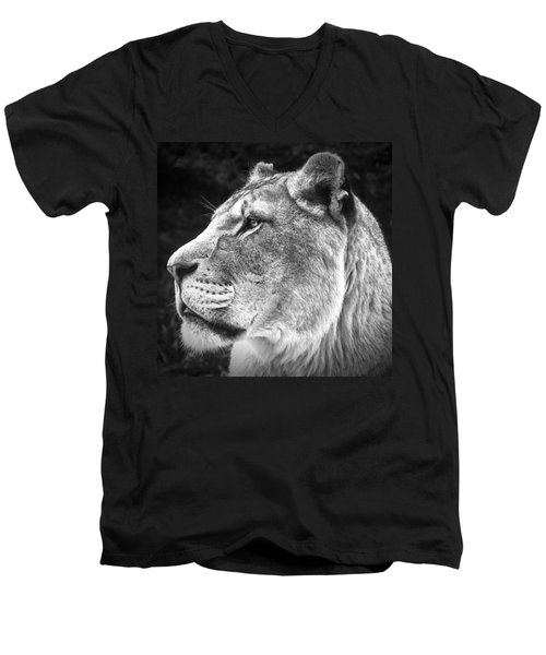 Silver Lioness - Squareformat Men's V-Neck T-Shirt by Chris Boulton