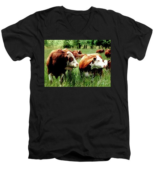 Simmental Bull And Hereford Cow Men's V-Neck T-Shirt by Larry Campbell