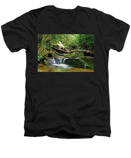 Sims Creek Waterfall Men's V-Neck T-Shirt