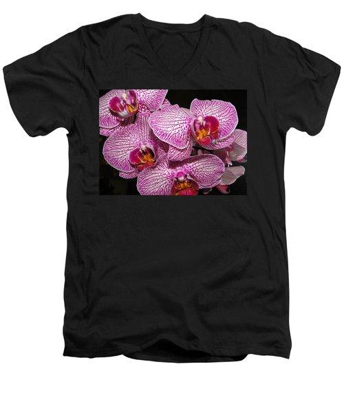 Singapore Orchid Men's V-Neck T-Shirt