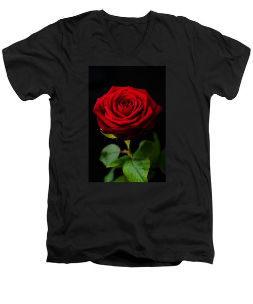 Single Rose Men's V-Neck T-Shirt by Miguel Winterpacht
