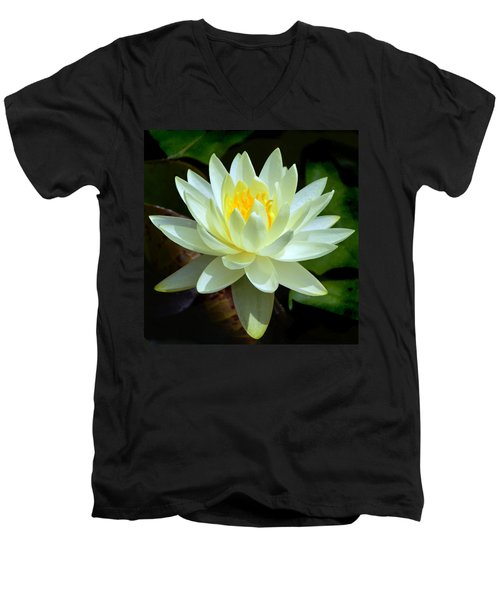Single Yellow Water Lily Men's V-Neck T-Shirt by Kathleen Stephens