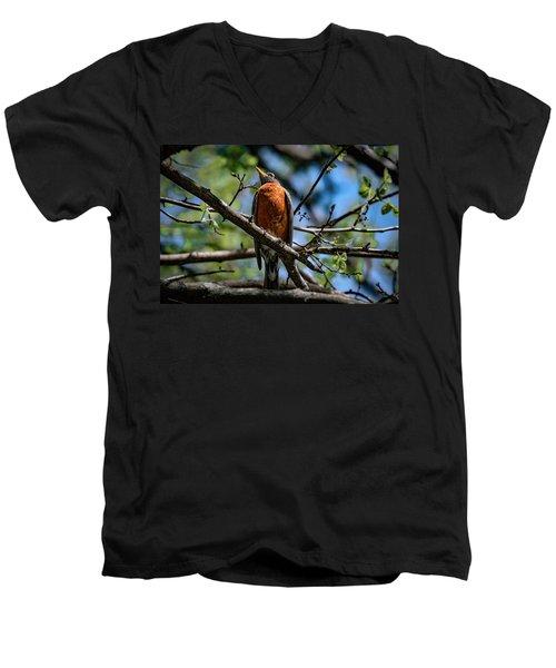 Sir Robin Men's V-Neck T-Shirt