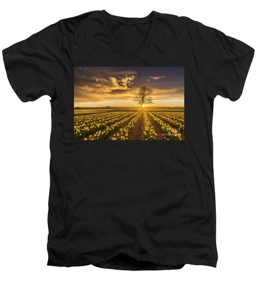 Men's V-Neck T-Shirt featuring the photograph Skagit Valley Daffodils Sunset by Mike Reid