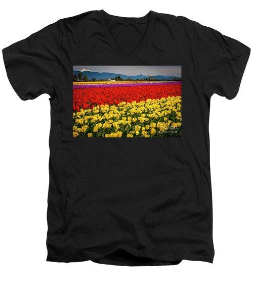 Skagit Valley Tulips  Men's V-Neck T-Shirt