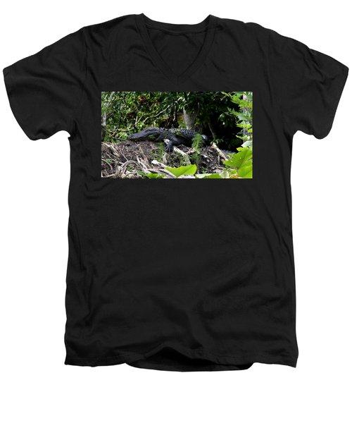 Sleeping Alligator Men's V-Neck T-Shirt