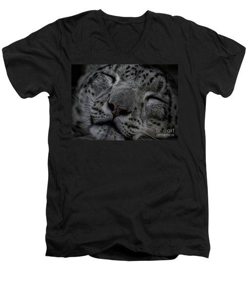 Sleepy Cat Men's V-Neck T-Shirt by Brad Allen Fine Art