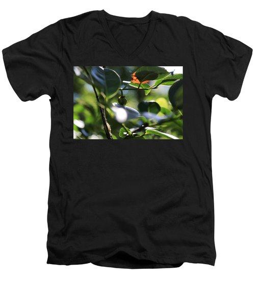 Small Nature's Beauty Men's V-Neck T-Shirt