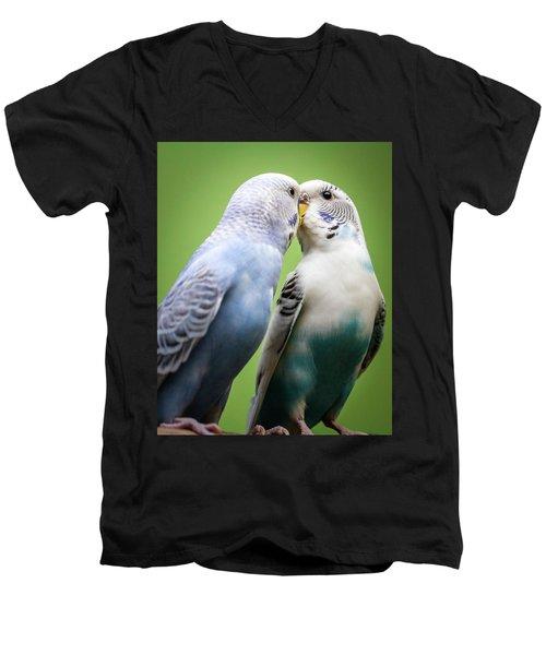 Smokey And Dusty Men's V-Neck T-Shirt