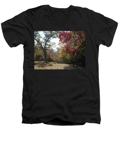 Smokies 12 Men's V-Neck T-Shirt by Val Oconnor