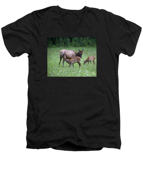 Smoky Mountain National Park Elk Cow Nursing Calf Men's V-Neck T-Shirt by Nature Scapes Fine Art