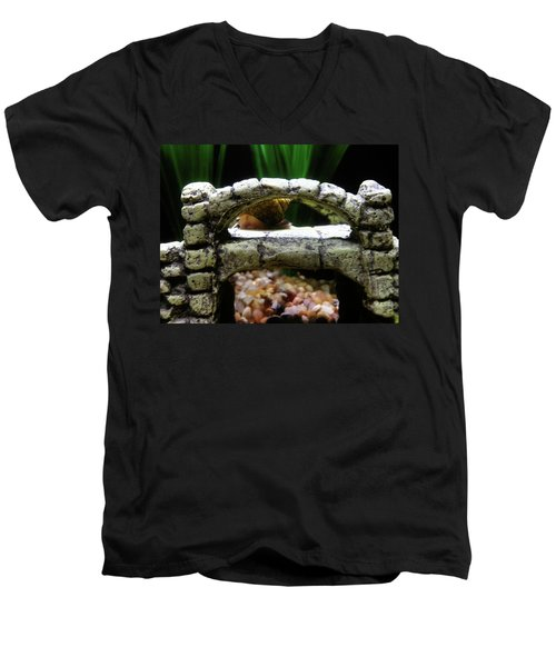 Men's V-Neck T-Shirt featuring the photograph Snail Over A Bridge by Robert Knight