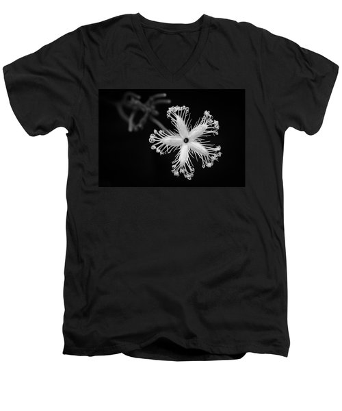 Snake Gourd Flower Men's V-Neck T-Shirt