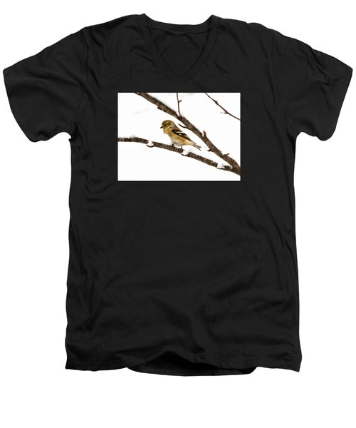 Snowy Day Goldfinch Men's V-Neck T-Shirt by Betty Pauwels