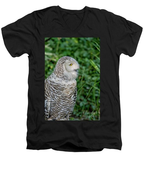 Men's V-Neck T-Shirt featuring the photograph Snowy Owl by Patricia Hofmeester