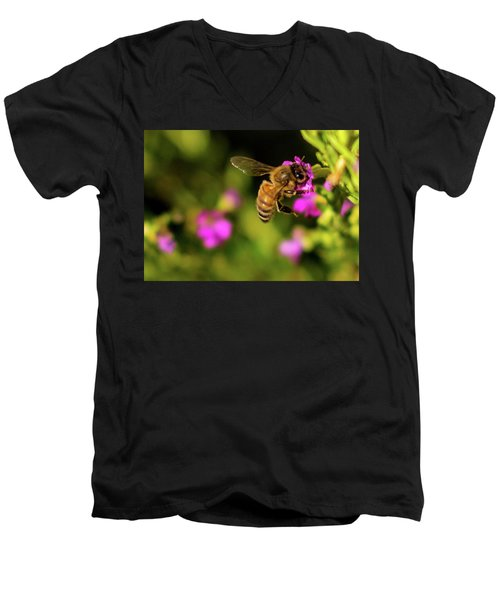 So Many Flowers... Men's V-Neck T-Shirt