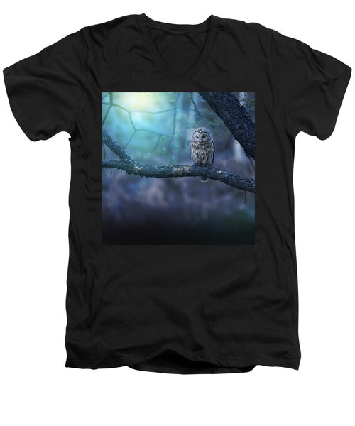 Solitude - Square Men's V-Neck T-Shirt by Rob Blair
