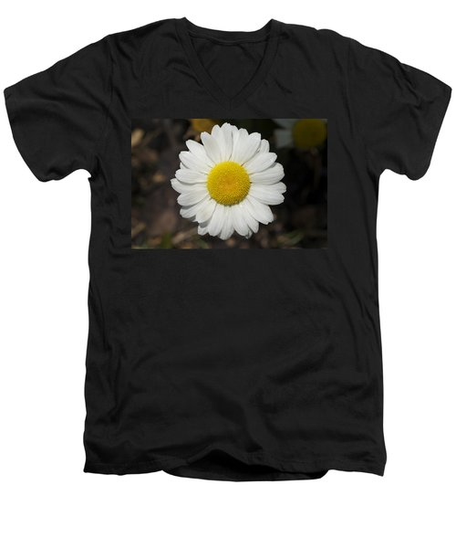 Solo Daisy Men's V-Neck T-Shirt
