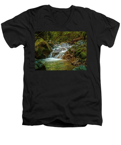 Men's V-Neck T-Shirt featuring the photograph Sonoma Valley Creek by Bill Gallagher