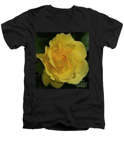Sparkle And Shine Rose Men's V-Neck T-Shirt