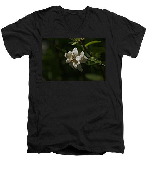 Spring 2016 30 Men's V-Neck T-Shirt by Cendrine Marrouat
