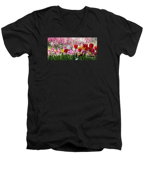 Spring Men's V-Neck T-Shirt by Angela DeFrias