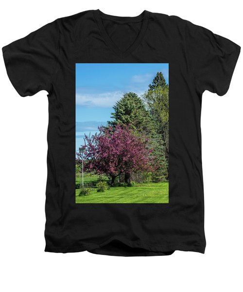 Men's V-Neck T-Shirt featuring the photograph Spring Blossoms by Paul Freidlund